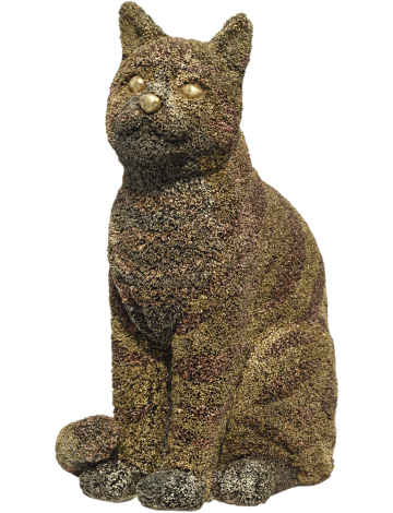 CAT – AS – TROPHY 1
