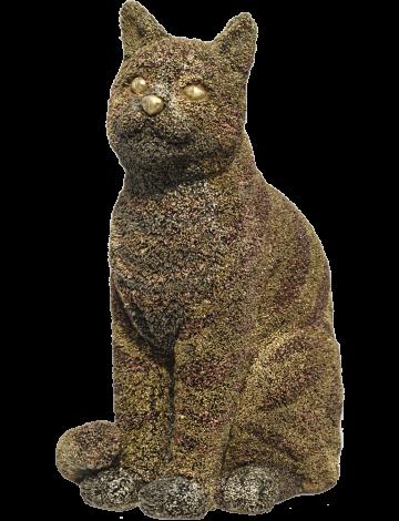 CAT – AS – TROPHY 1