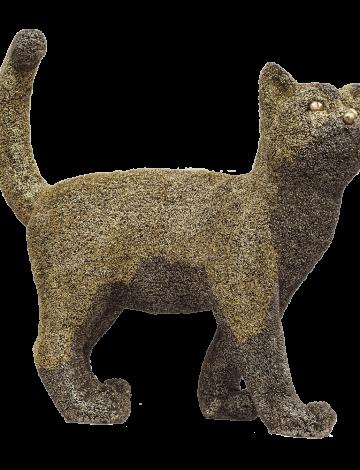 CAT – AS – TROPHY 2